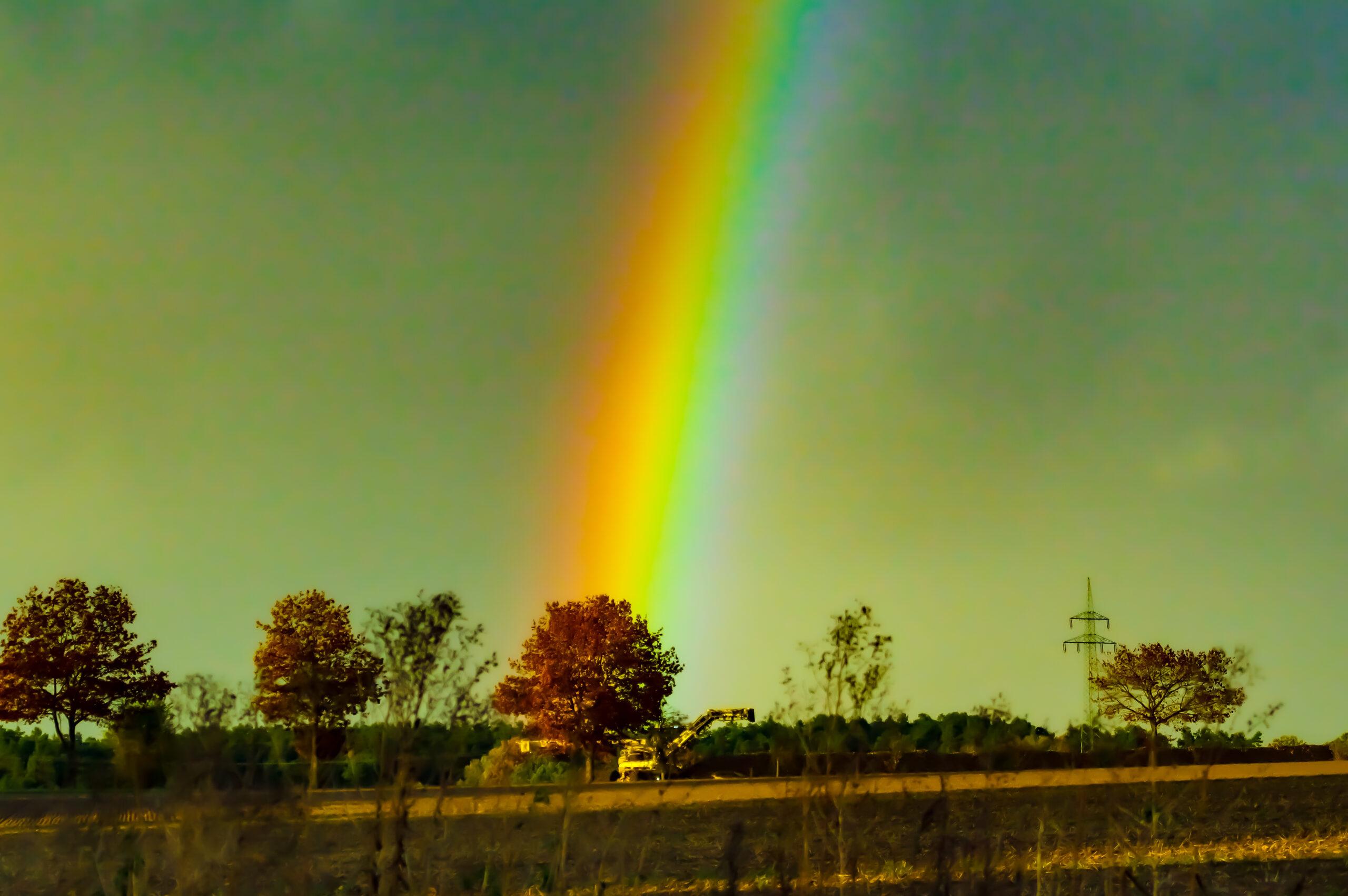 Rübenernte unterm Regenbogen